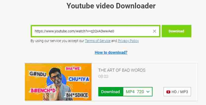 youtube video download software usage guide