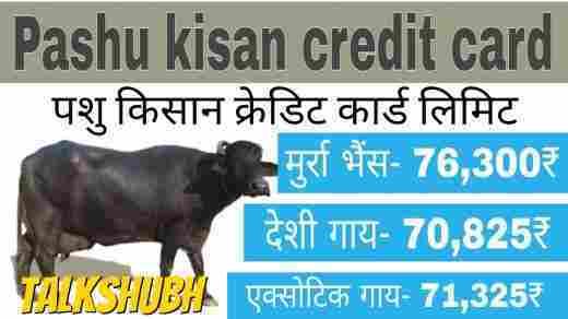 haryana-pashu-credit-card